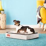 Brindle Plush Orthopedic Pillow Cat & Dog Bed w/Removable Cover, Charcoal Black, Small